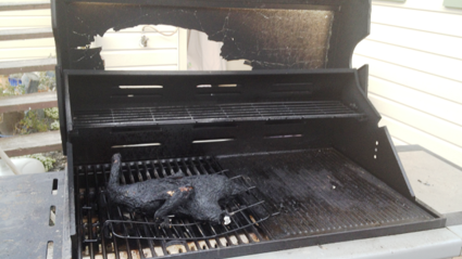PICS: Need a new BBQ much?
