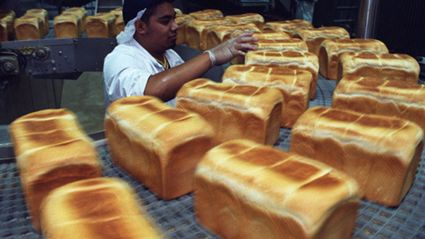 White Bread Linked To Obesity