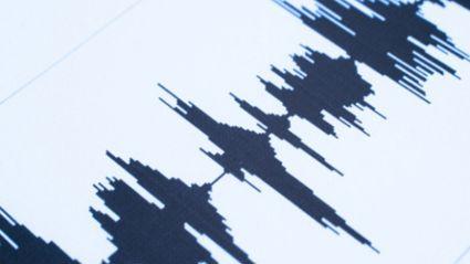 Earthquake felt in Tauranga