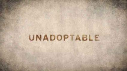 The Un-Adoptables ADELE