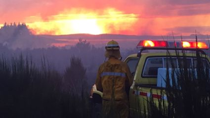 NEWS: Taupo Fire Permits On Hold