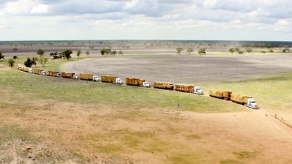 Farmer leads 120 trucks in mass convoy delivering hay to drought stricken Queensland