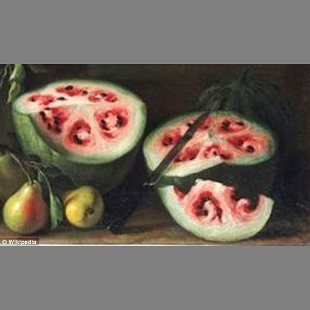 Wild watermelon: The painting which was created between 1645 and 1672, shows swirly shapes in the center that is marked off in six separate sections. Modern watermelons have a lot more edible flesh!