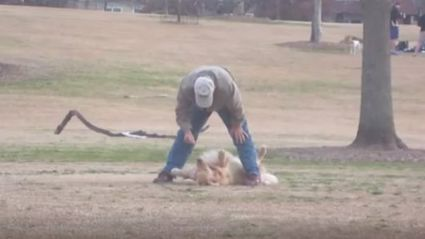 Watch: Dog Plays Dead So He Can Stay At The Park Longer