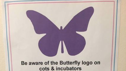 The Heartbreaking Story Behind These Purple Butterflies on Cots
