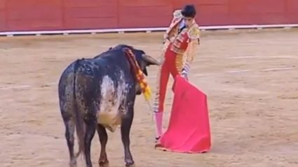 Spanish Bullfighter's Death 'Unfair'