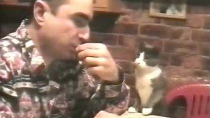 This deaf man's cat literally communicates with him in sign language