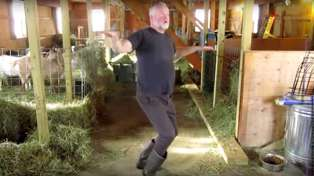 This goat farmer dancing to 'Cheap Thrills' while doing chores in his barn is guaranteed to make you smile!