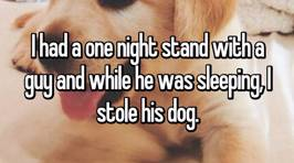 People reveal the shocking reasons why they've stolen a dog