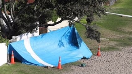 Human skeletal remains found at Auckland beach