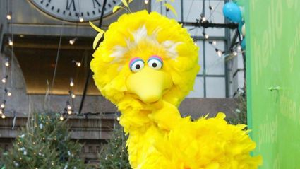 Meet the man behind the yellow feathers of 'Big Bird'