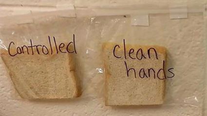 Teacher's gross bread experiment shows kids why they need to wash their hands
