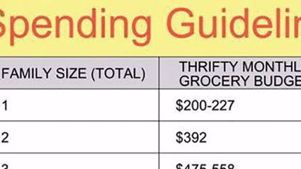 This monthly grocery budget chart is majorly dividing the internet