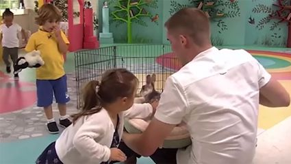This video of a boy helping Down syndrome girl overcome her rabbit fear will melt your heart
