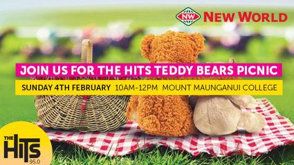 Tauranga: Teddy Bears Picnic
