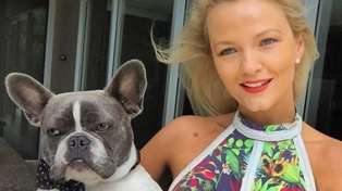 Former 'Bachelor' star Chrystal Chenery makes a desperate plea for the return of her dog