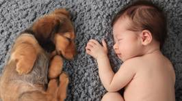 Heart-warming photos show the special bond of babies and their furry best friends
