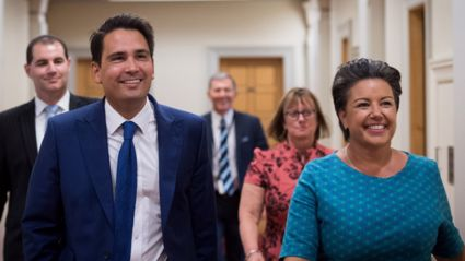 Simon Bridges is the new leader of the National Party
