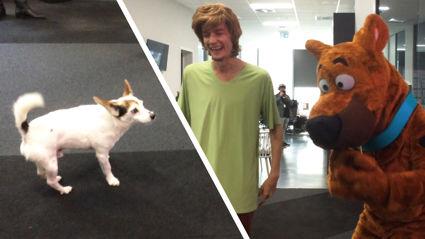 Watch what happened when Eddie met Scooby-Doo!