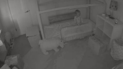 Baffled parents catch toddler's adorable partners in crime