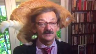 Watch this Polish historian get hilariously interrupted by his cat during a live interview