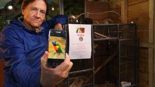 Whangārei pet shop owner appeals for return of stolen animals