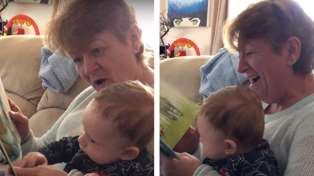 Kiwi kids book The Wonky Donkey goes viral thanks to Scottish grandma's giggles
