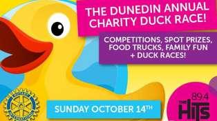 DUNEDIN: The Hits Annual Charity Duck Race