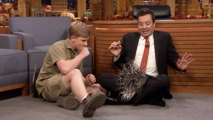 Robert Irwin's baby porcupine gets a bit too cosy in Jimmy Fallon's lap and it will make you laugh!