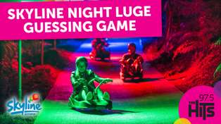 Skyline Night Luge Guessing Game