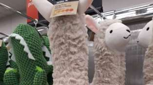 Kmart shoppers left shocked after accidentally X-RATED dog's toy released!