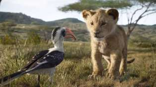 Kiwi man's plea for parents to 'please don't take kids to Lion King after 5pm'