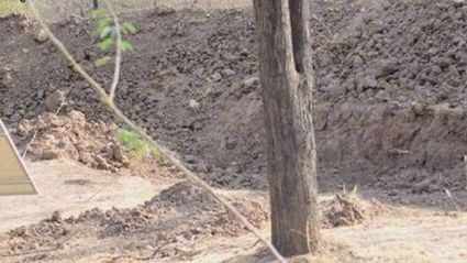 There is actually a leopard hiding in this photo - can you spot him?