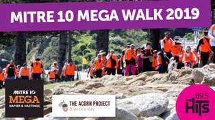 Mitre 10 Mega Walk 2019