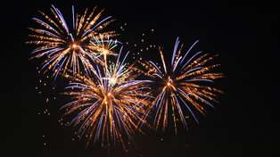 Should private fireworks be banned? Pet owners, firefighters brace for Guy Fawkes tonight