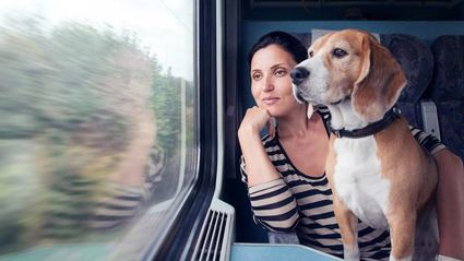 Dogs of all sizes welcome on Auckland Transport trains from this weekend