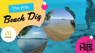 The Hits Beach Dig 2020
