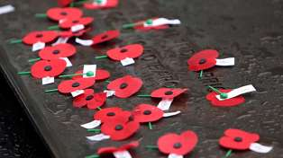 How to pay your respects on ANZAC Day without leaving the house