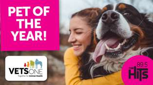 Pet Of The Year thanks to VetsOne - VOTING NOW OPEN!