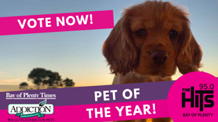 Addiction Pet Foods, Pet of the Year - VOTE NOW