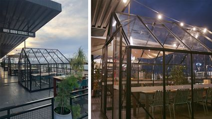 This New Zealand eatery has built glasshouses for adorable social-distant dining