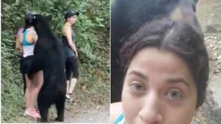Watch the shocking moment a black bear sneaks up on fearless hikers in Mexican park