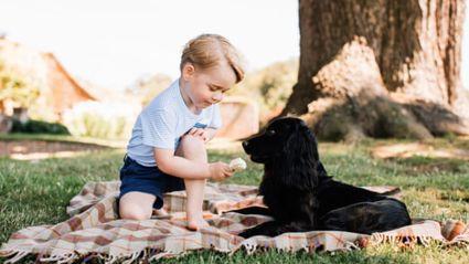 Photo / Matt Porteous, Kensington Royal Instagram