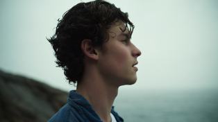 Singer Shawn Mendes' brand new Netflix documentary 'In Wonder' is out today!