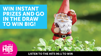 The Hits Gnome Hunt!