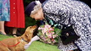 The Queen reveals the special meaning behind the names of her new pups